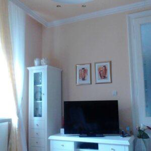 MOLER JOCA – Molerski radovi – Novi Sad