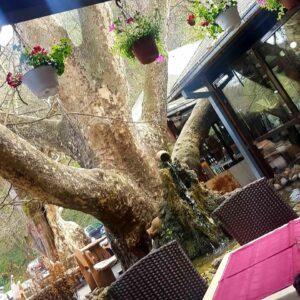 """Restoran """"Kod Laze"""" Platan – Valjevo"""