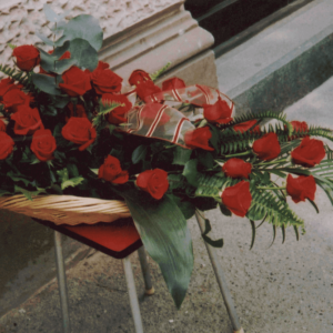 Cvećara IKEBANA Subotica