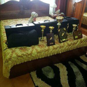 Trubaci Beograd Trubaci za svadbe +381 628793356
